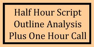 Half Hour Outline Analysis Plus One Hour Call Logo